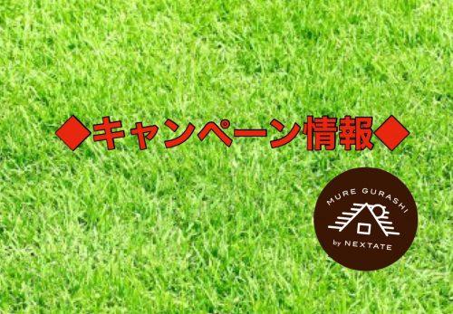 ◆キャンペーン情報◆